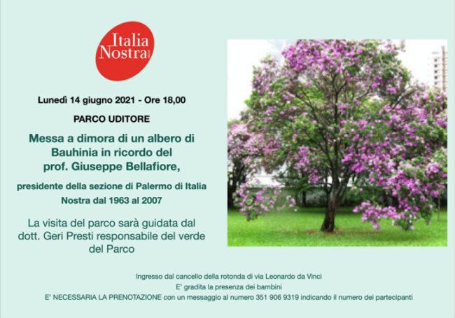 Invito Parco Uditore 14.6.21 1